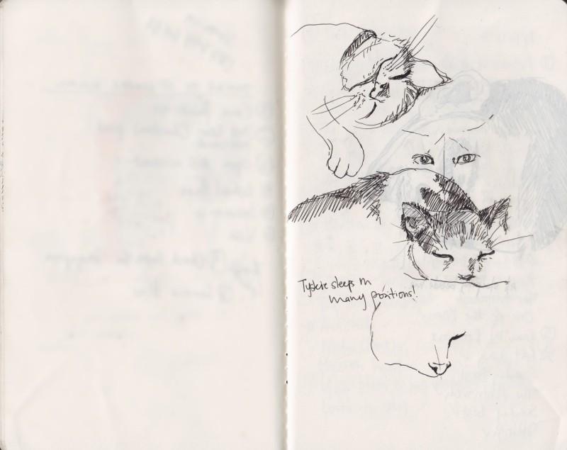 Sketch Tyskie