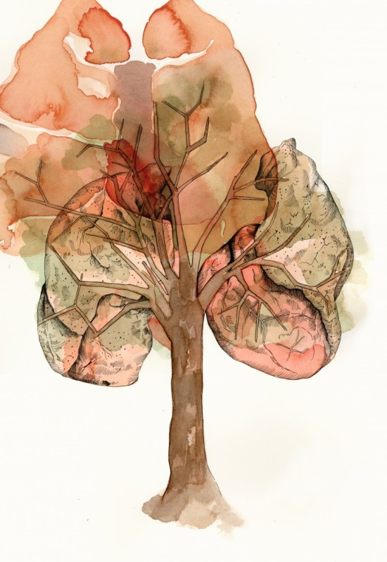 Lung Tree_2